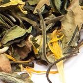 Weißer Tee Pai Mu Tan 'Holunderblüte'