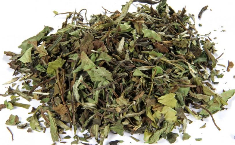 Fuding Pai Mu Tan (Weißer Tee)