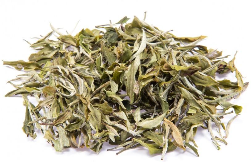 Weißer Tee Nepal 'Pai Mu Tan'
