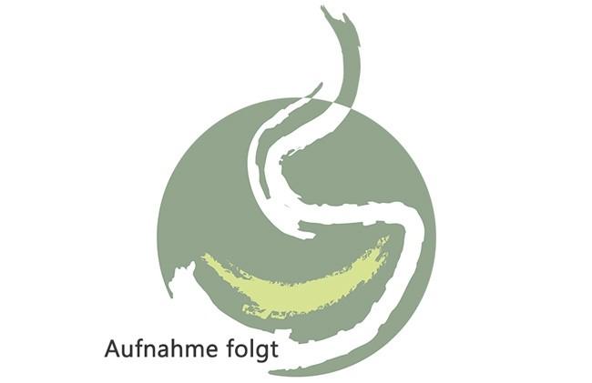 Flugtee Bio Darjeeling 'Steinthal