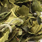 Weißer Tee Bai Mu Dan Super Green