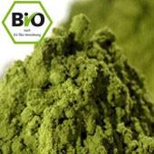 Bio Einstiegs-Matcha, 30g Dose
