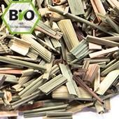 Bio Limonengras / Lemongrass