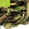 Weißer Tee Bio Fujian Pai Mu Tan
