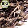 Bio Weißer Tee Yunnan 'Silver Moonlight'