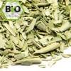 Bio Olivenblätter, geschnitten