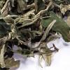 Weißer Tee Yunnan 'Pai Mu Tan'